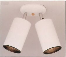 White With Black Baffle Adjustable 2 Light Spot Ceiling Fixture