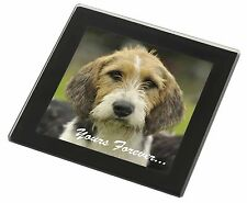 "Welsh Fox Terrier Dog ""Yours Forever..."" Black Rim Glass Coaster Anim, AD-FT4yGC"