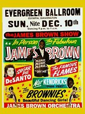 """James Brown Evergreen 16"""" x 12"""" Photo Repro Concert Poster"""