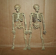 "Two 1/12 Scale Human Skeleton Figures - Plastic Halloween Decor 6"" Skull & Bones"