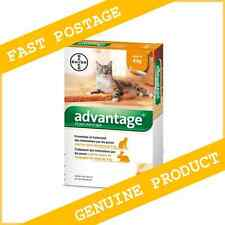 Advantage Orange for Cats/Kittens Under/Up to 9 lbs( 4kg) 6 Month Supply (6Pack)