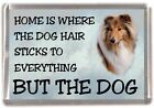 "Rough Collie Dog Sable Fridge Magnet ""Home is Where"" Design No 3 by Starprint"