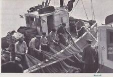 1966  --  ROSCOFF   MATRINS AU TRAVAIL SUR LES BATEAUX   3E977
