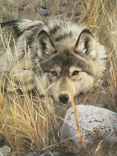 WOLF ART PRINT One to One (detail) by Carl Brenders Wildlife 14x11 Wolves Poster