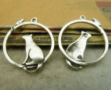 10x Tibetan Silver Mouse Cat Animal Pendant Charms Jewellery Accessories /565