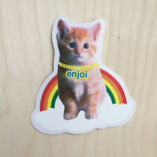 Enjoi skateboard vinyl sticker decal bumper kitty cat meow rainbow chain LGBT