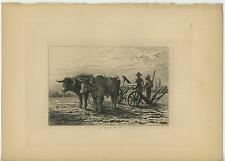 ANTIQUE FARMERS PEASANTS OXEN COWS FURROW PLOUGH GARDEN FIELD ORIG ETCHING PRINT