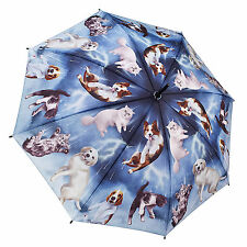 Galleria Stick Umbrella-Raining Gatos Y Perros