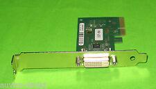 Fujitsu Siemens FSC PCI Express PCI-E Grafikkarte D2823-B11 GS 1 DVI ADD2 Card