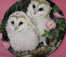 WEDGWOOD THE BABY OWLS PLATE BARN OWL CHICKS DICK TWINNEY