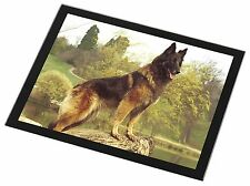 Tervueren Belgian Shepherd Dog Black Rim Glass Placemat Animal Table , AD-BST1GP