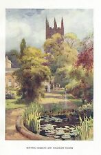 HASLEHUST VINTAGE PRINT : BOTANIC GARDENS AND MAGDALEN TOWER OXFORD