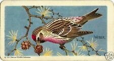 RED ROSE TEA CARD, SONGBIRDS OF NORTH AMERICA, COMMON REDPOLL