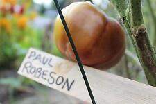 Paul Robeson Tomato Seeds - 50 Seeds - ranked #1 for taste in the world!