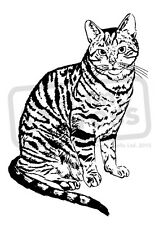 A7 'Tabby Cat' Unmounted Rubber Stamp (SP002746)