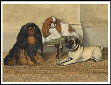 King Charles English Toy Spaniel Dogs And Pug Lovely Dog Print Poster