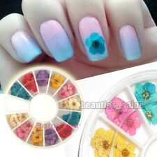 12 Colors/Box Real Dry Dried Flower Nail Art Manicure Decoration Charms Craft