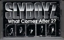 SLYBOYZ: WHAT COMES AFTER 2? CASSETTE HARD ROCK HAIR METAL SAVANNAH IVY STONE