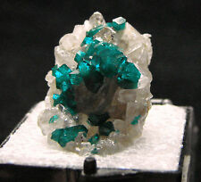 Dioptase blue-green crystals, T/N CAPTIVATING, T. L. Altyn-Tyube, Kazakhstan