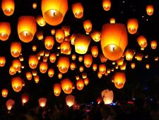 100Pcs Rose Paper Chinese Lanterns Sky Fly Candle Lamp for Wish Party Wedding