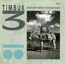 TIMBUK 3 The Future's So Bright I Gotta Wear Shades Vinyl Record 12 Inch IRS EX