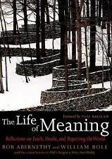 The Life of Meaning: Reflections on Faith, Doubt, and Repairing the World Bob A