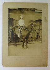 Vintage Photograph Mounted on Board - Young Boy on a Horse / Pony