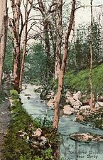 P.C Melbourne Woods Near Derby Derbyshire P U 1905 Excellent Condition