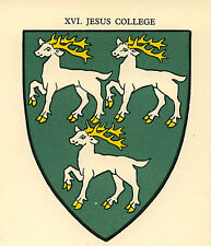 Oxford, Jesus College Coat of Arms ready mounted antique print 1929 SUPERB