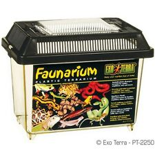 "Exo Terra Faunarium / All-Purpose Terrarium Mini  7"" x 4"" x 5"""