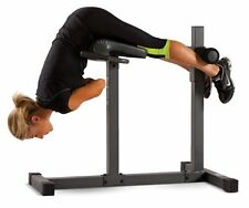 Apex Roman/Hyper Extension Home Workout Weight Fitness Gym Adjustable Bench