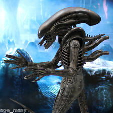 HOT TOYS - ALIEN BIG CHAP (MMS106) 1/6 action figure - F/S EMS from Japan