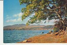 Vintage unused Arthur Dixon Postcard Scotland Lake of Menteith, Perthshire, 3569