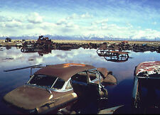Junk Yard with 1950s cars submerged in water  8 x 10 Photograph