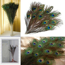 10X Cheap Gifts DIY Peacock Eye Tail Feather for Masquerade Decoration Party
