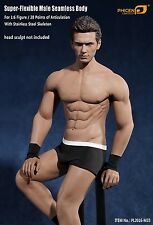 PL2016-M33 Phicen 1/6 Scale Super Flexible Male Seamless Body IN STOCK(NO HEAD