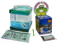 Grow A Frog Tadpole Kit by Three Rivers - Grow-A-Frog Amphibian - Free Shipping!