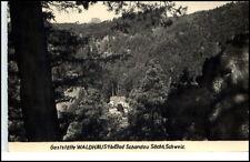 Bad Schandau Sachsen DDR Postkarte 1959 Blick auf Gaststätte Waldhäusl gelaufen
