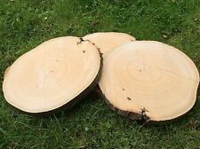 8x Wedding Rustic Log Slices table centre piece decoration cake stand tree trunk