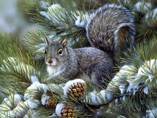 """Canvas Print Squirrel Oil Painting Picture Printed on canvas 16""""X20"""" L013"""