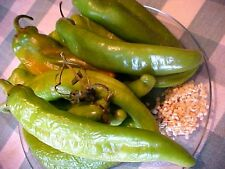 "50 HATCH VALLEY, NEW MEXICO USA  LEGENDARY ""MILD"" GREEN CHILI PEPPER SEEDS  BEST"