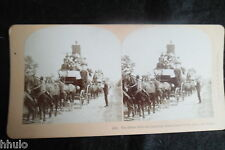 STA904 Carnaval Carnival Charriot fleuri caleche Photo 1900 STEREO stereoview