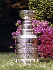 STANLEY CUP PHOTO NY ISLANDERS MONTREAL CANADIENS EDMONTON OILERS LA KINGS
