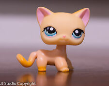 *Littlest Pet Shop* LPS #339 Orange Short Hair Cat Raceabout Ranch Authentic
