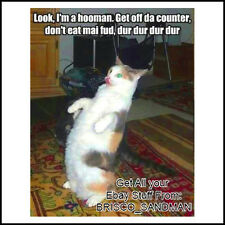 "Fridge Fun Refrigerator Magnet ""LOOK IM A HOOMAN"" Cat Meme Funny Mocking Parody"