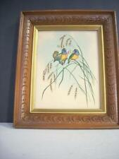 VINTAGE AMADINA GOLD FINCH BIRD PICTURE/PRINT BY GOULD FRAMED  (A5)