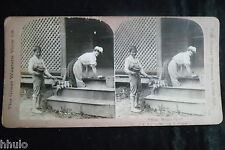 STA818 Scene de genre enfant femme de ménage albumen Photo stereoview 1900