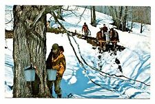 Maple Sugar Time Vermont Postcard Gathering Sap Cloudland Farm Snow Horses Plow