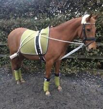 Hardy's cheval/cob/poney pessoa type training aid (blanc) + corps roller seulement £ 39.99