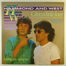 "12"" LP - Hammond - Give A Little Love / Loving You, Loving Me - C1216"